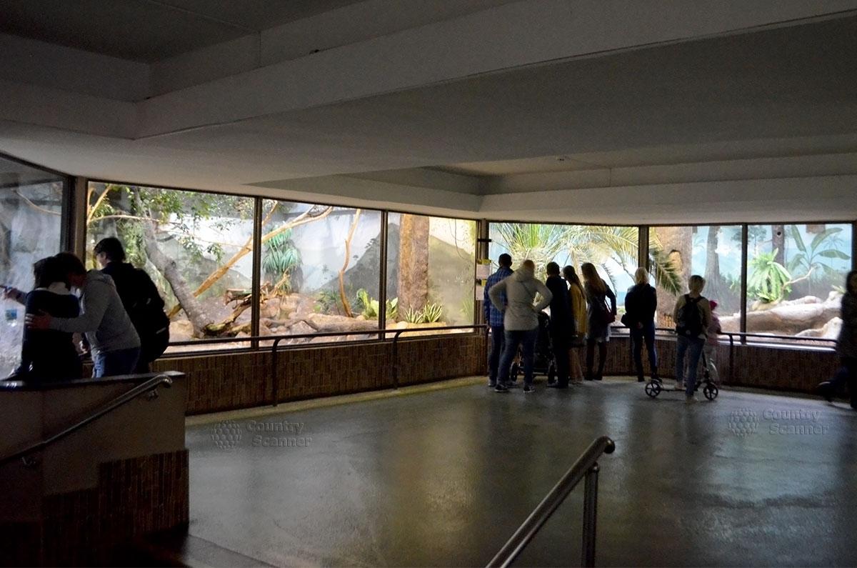 Выставочный зал в Московском зоопарке.