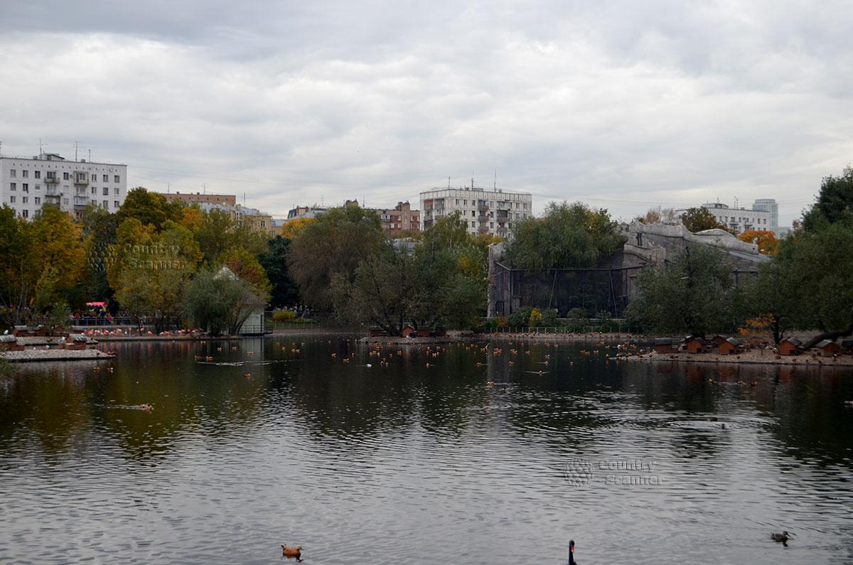 Пруд на территории Московского зоопарка.