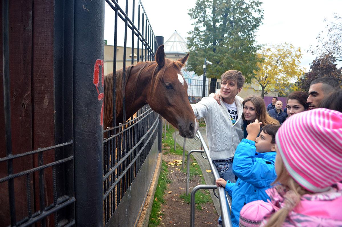 Ценители лошадей в Московском зоопарке.