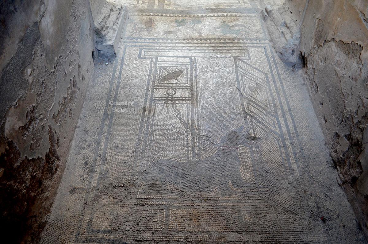 Античная мозаика в городе Помпеи.