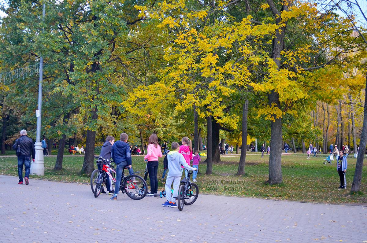 Дети и велосипеды на аллее Воронцовского парка