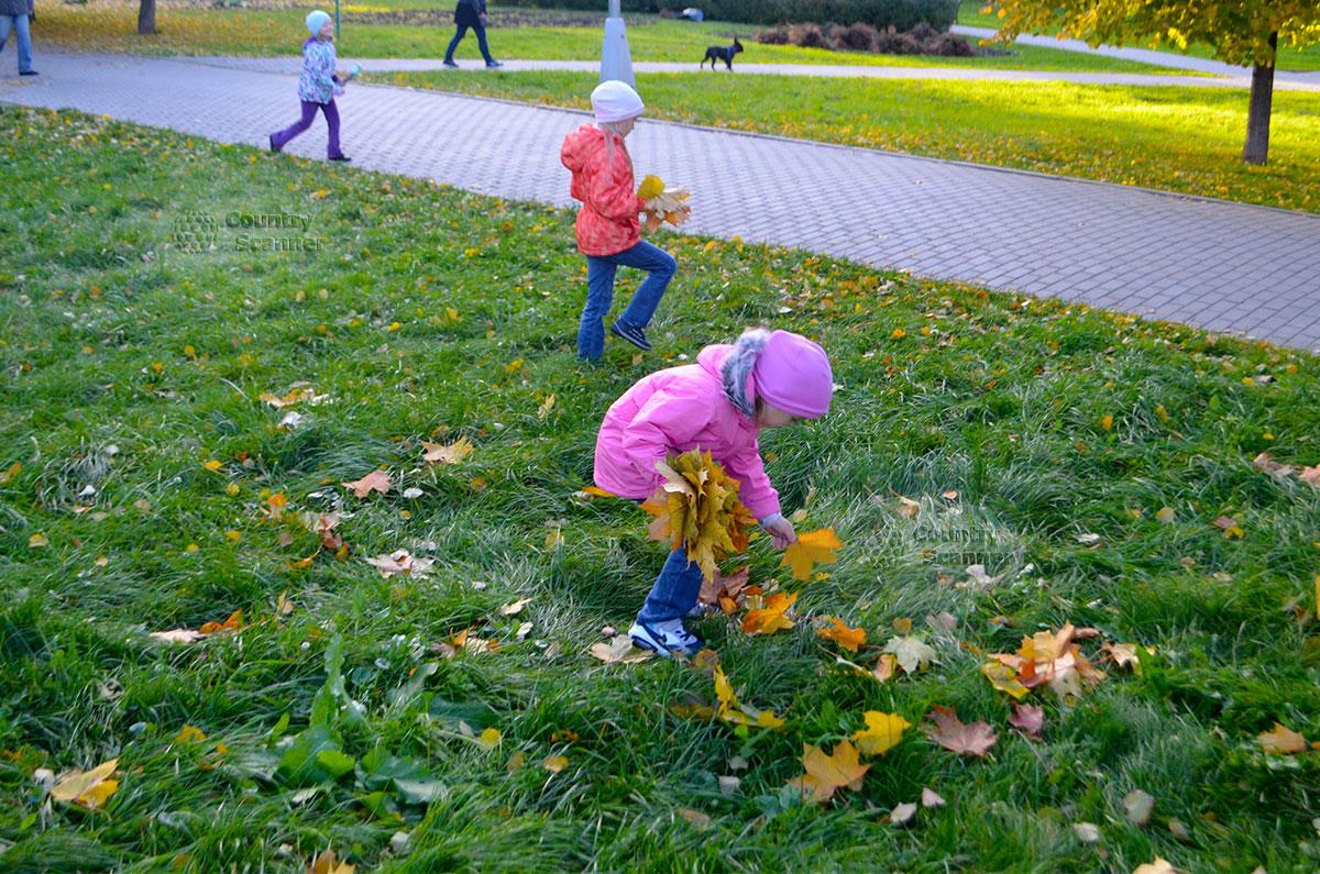 Дети собирают осенние листья в Воронцовском парке