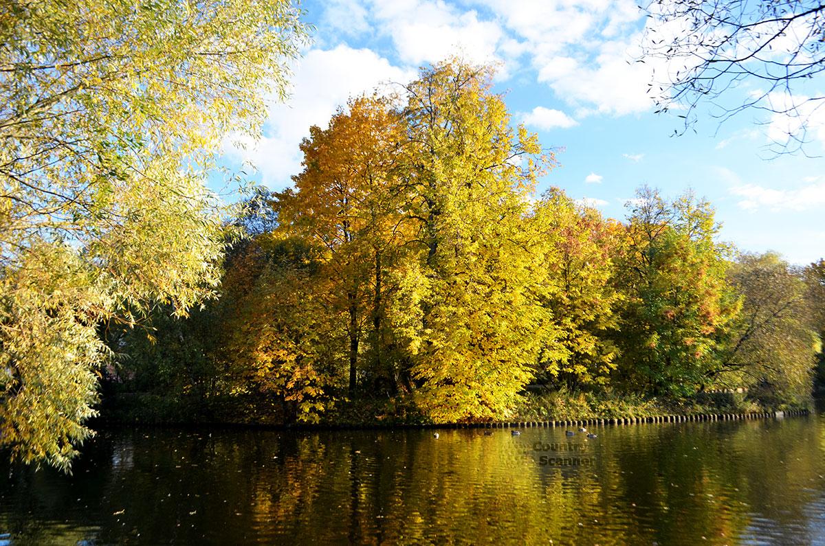Воронцовский парк. Пруд. Осень.