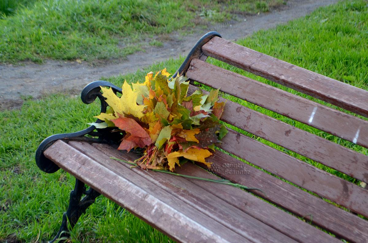 Букет осенних цветов на скамейке в Воронцовском парке