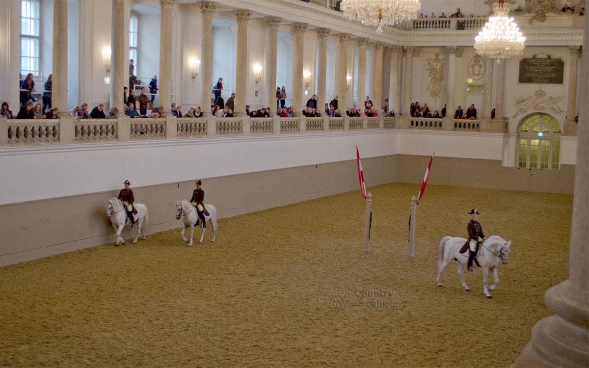 Испанская школа верховой езды в Вене. Манеж.