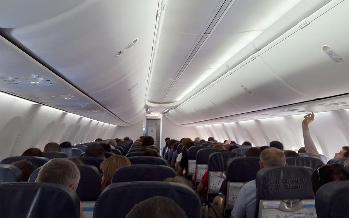 Туристическая новость. Змея в самолета.