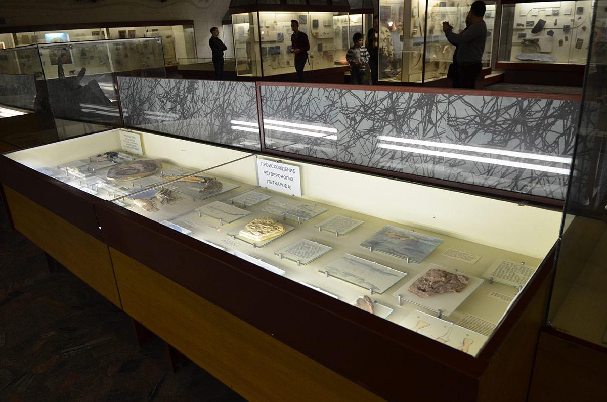 Палеонтологический музей в Москве. Посетители в зале.