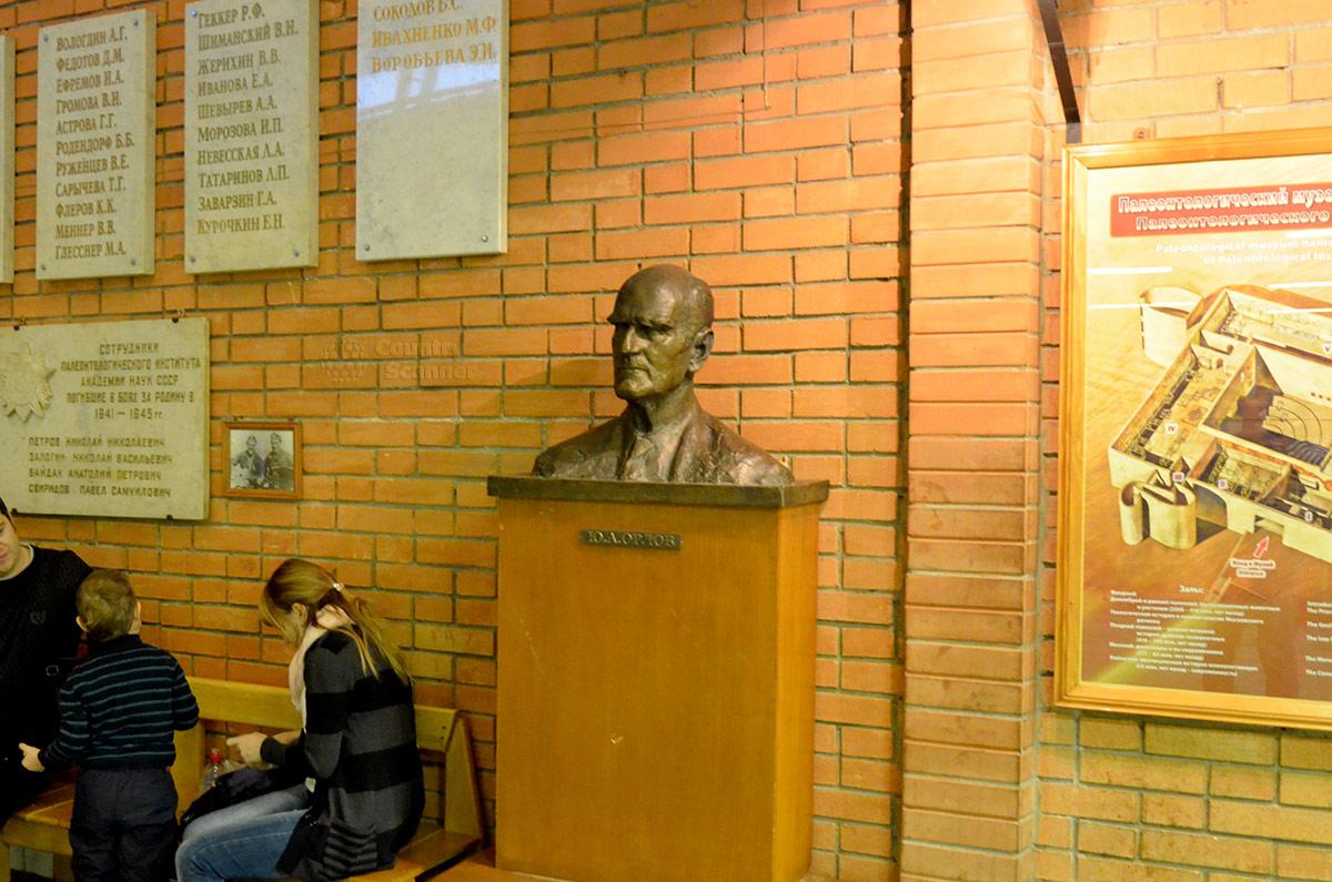 Встречает основатель Палеонтологического музея в Москве – академик Орлов.