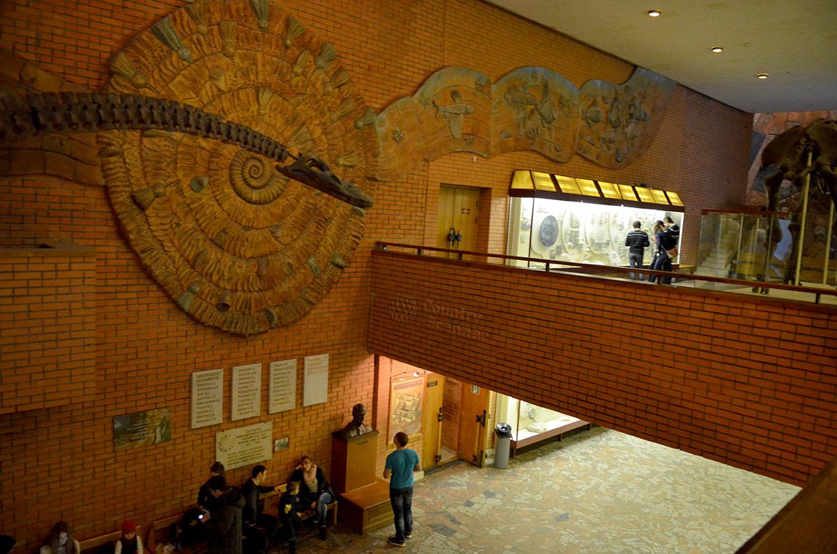 Палеонтологический музей в Москве. Общий вид оформления.