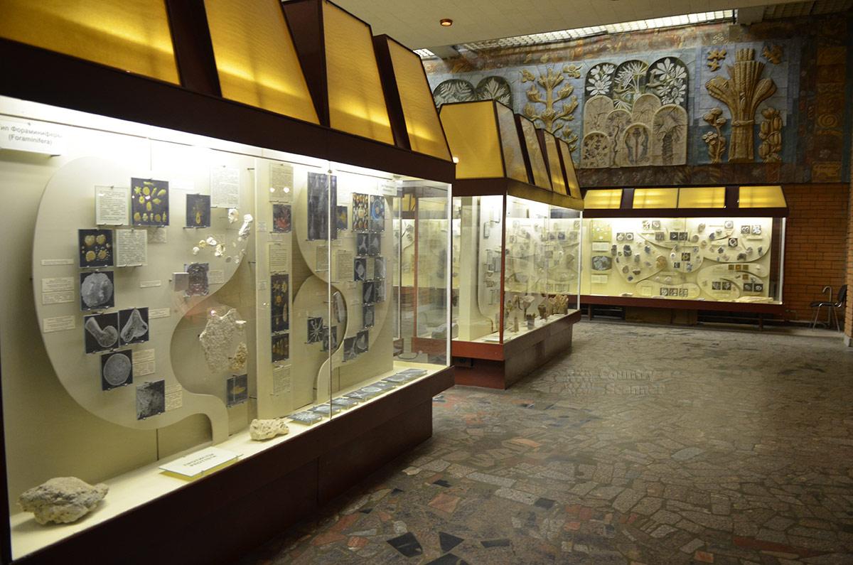 Интерьер одного из залов Палеонтологического музея в Москве.