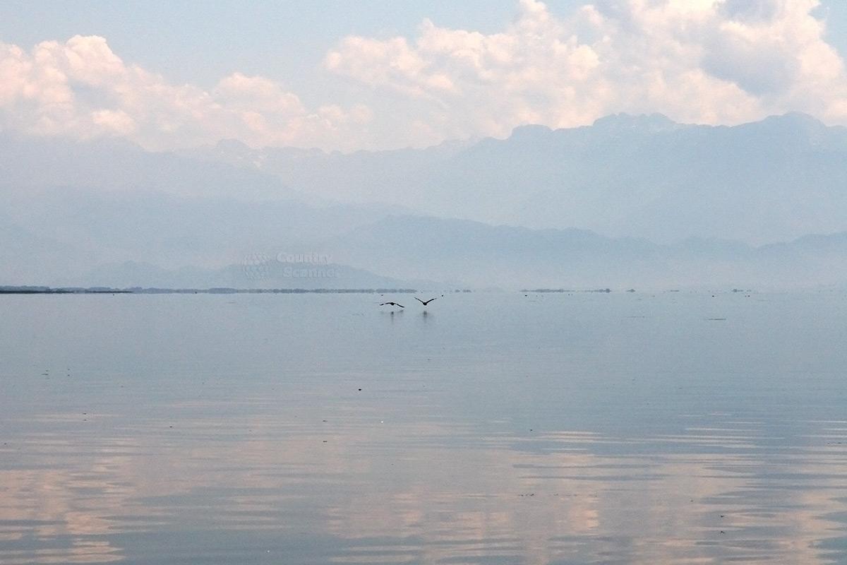 Скадарское озеро, органично сливающееся с окружающим пейзажем.