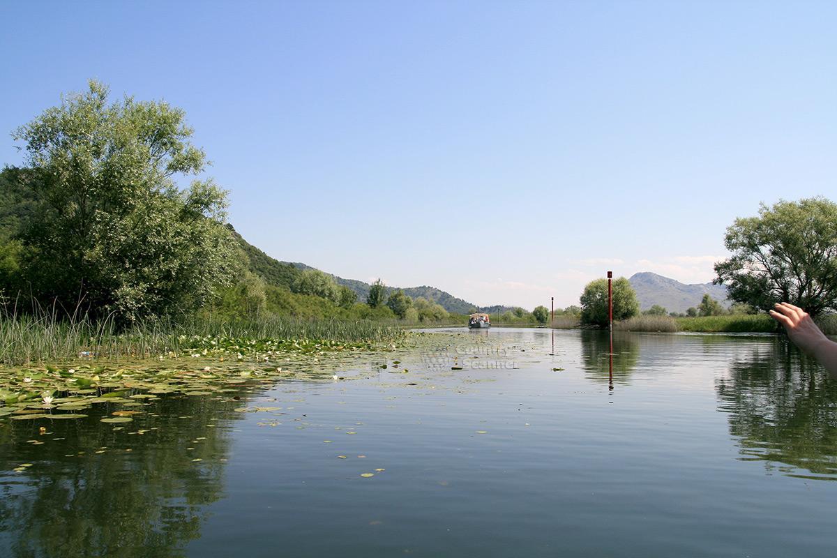 Водная гладь Скадарского озера.