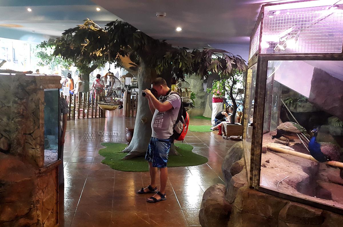 В зоопарке Рио можно делать фотографии