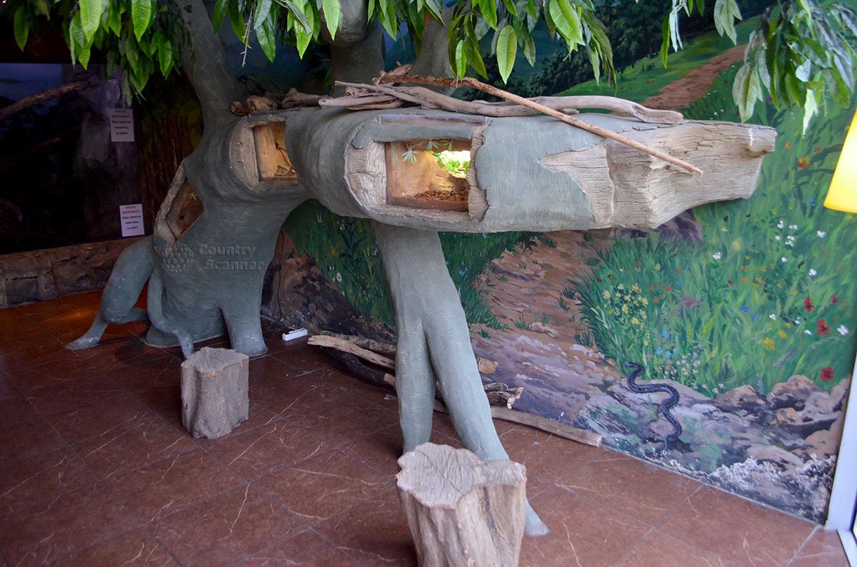Оригинальное оформленные домиков для жителей зоопарка Рио
