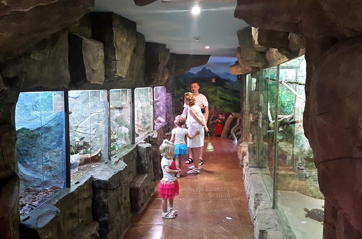 Разновозрастные посетители зоопарка Рио