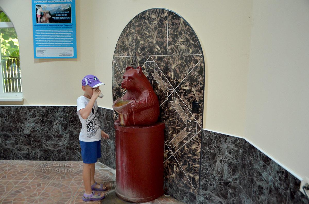 Один из мишек, раздающих воду в павильоне нарзанного источника Чвижепсе.