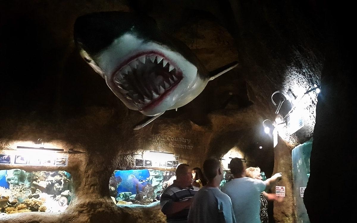 Океанариум в Ривьере. Общий вид выставочного зала.