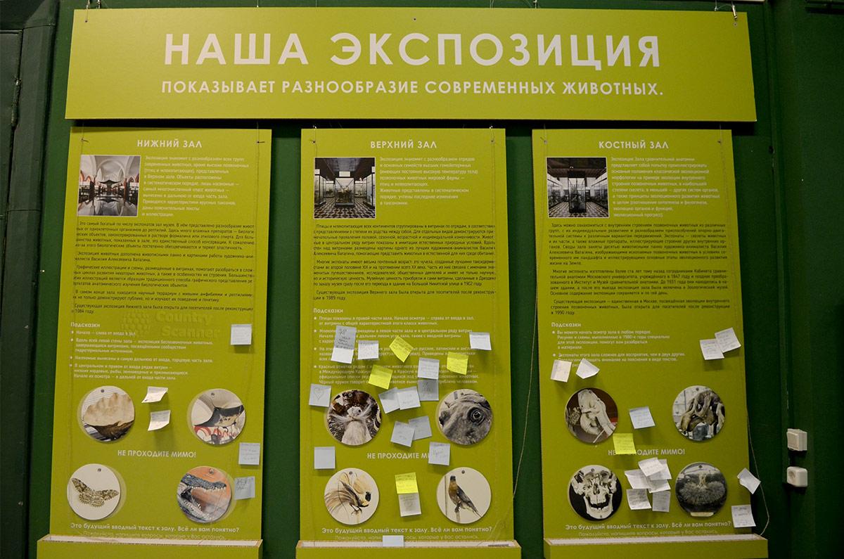 Информационный стенд зоологического музея МГУ рассказывает о составе и расположении экспозиции.