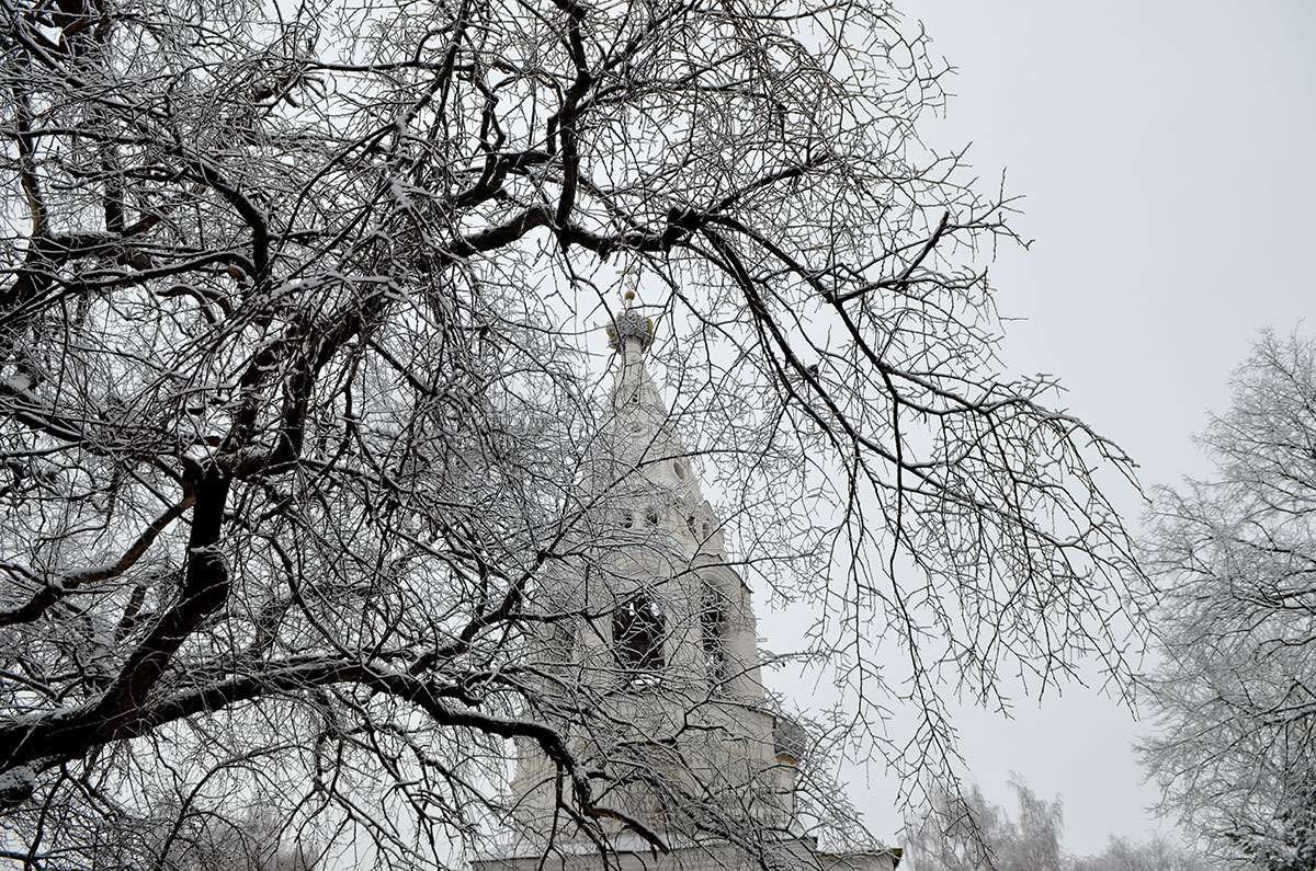 Прощальный взгляд на колокольню после посещения церкви Иоанна Богослова в Костроме. Впечатления усиливаются покрытыми инеем ветвями окружающих храм деревьев.