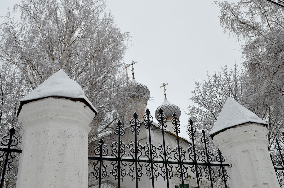 Купола церкви Иоанна Богослова в Костроме выглядят очень живописно за ажурной решеткой храмовой ограды, в сочетании с покрытыми инеем деревьями.