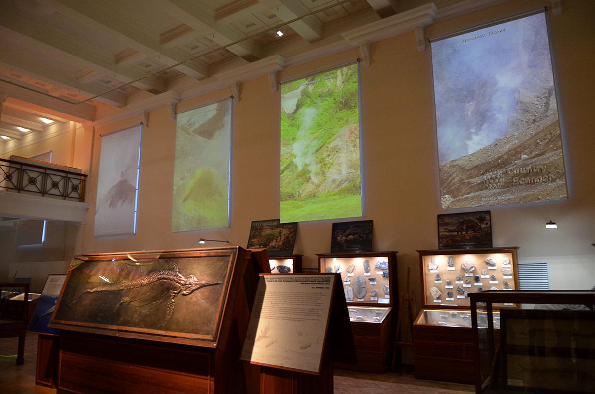 Геологический музей Вернадского. Экспозиция древних окаменелостей, найденных при проведении геологоразведочных работ.