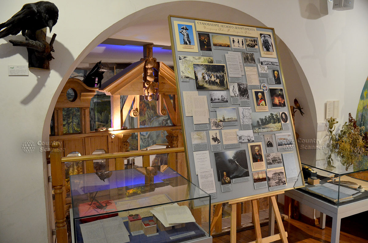 Стенд в музее леса об истории Лесного департамента, о выдающихся специалистах в лесоразведении и охране лесов.