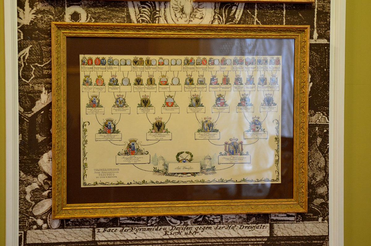Генеалогическое древо семейства в музее Льва Толстого на Пречистенке в Москве.