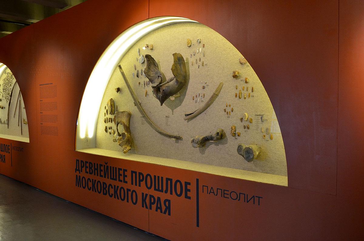 Музей Москвы демонстрирует древнейшие следы присутствия человека на нынешней московской территории. Датируются находки историческим периодом палеолита, каменным веком человечества.