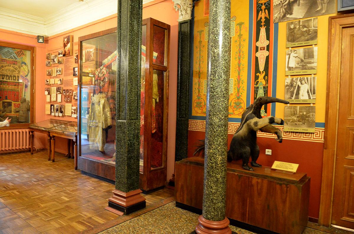 Уголок дедушки Дурова. Витрина с богато украшенными нарядами.
