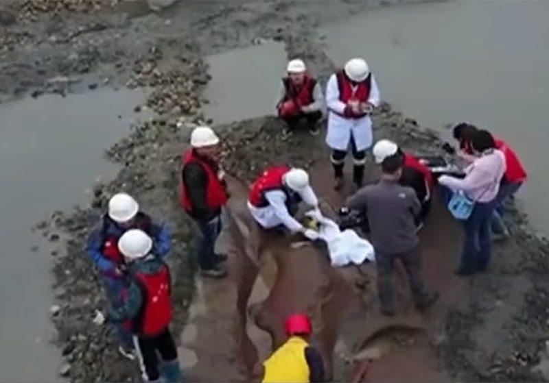 Новость 27-03-2017 Уникальные находки были найдены в русле реки Миньцзян