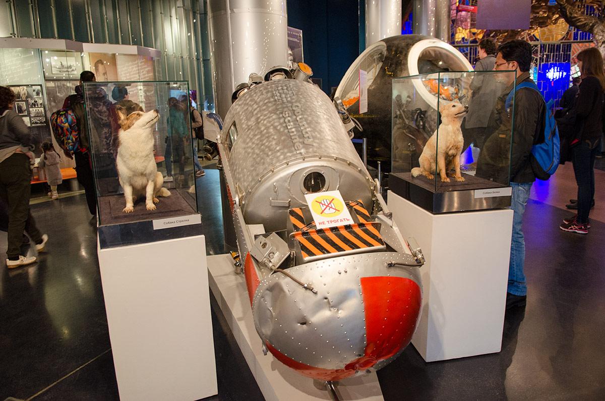 Катапультируемая капсула, обеспечившая успешное возвращение на Землю первых побывавших в космосе живых существ. В музее космонавтики хранятся и чучела этих собак – Белки и Стрелки.