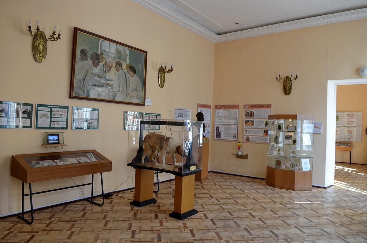 Экспозиция работ Павлова музея гигиены.