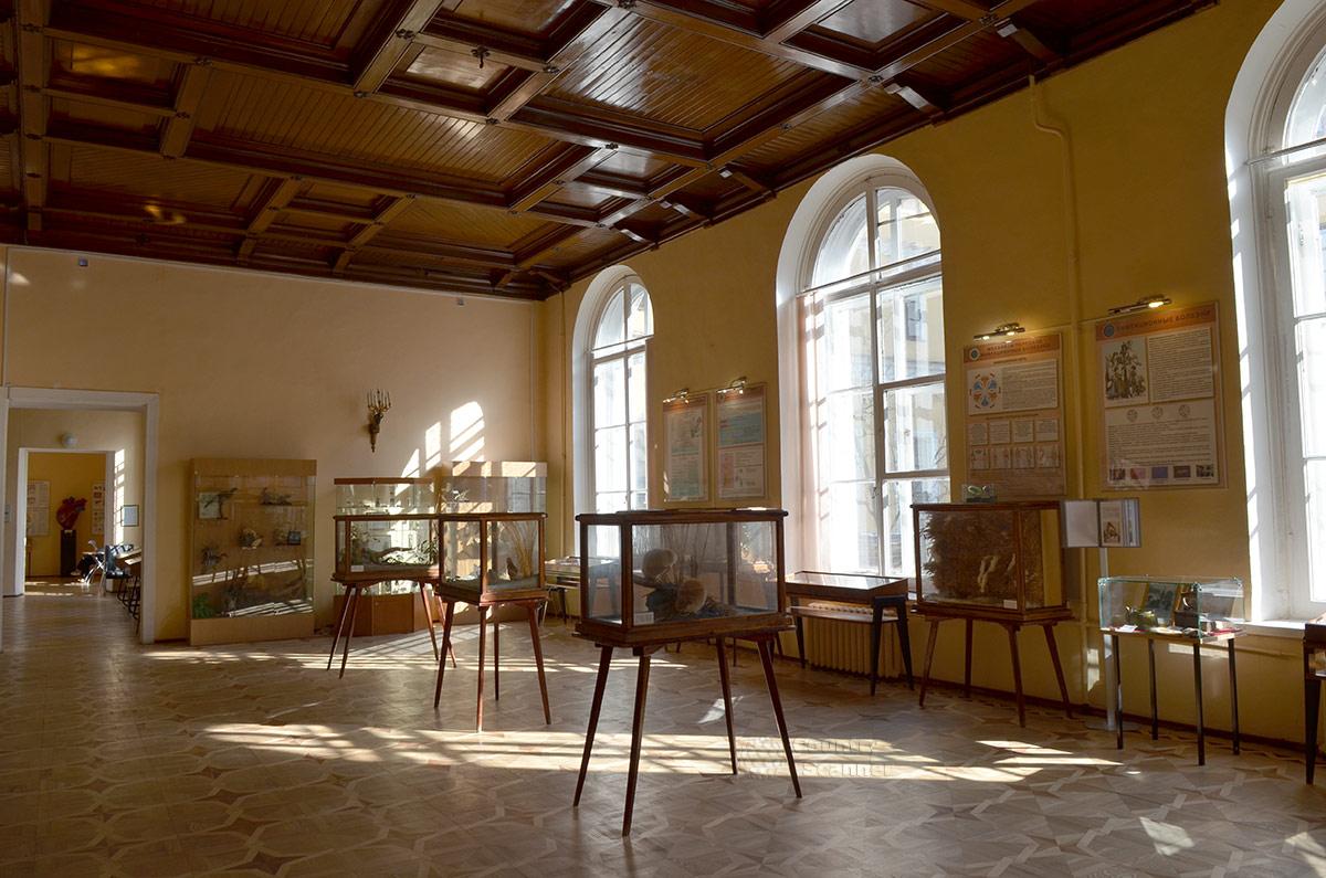 Экспозиция музея гигиены об инфекционных заболеваниях.
