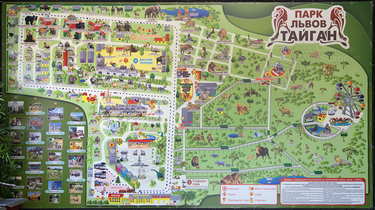 Карта парка львов Тайган.