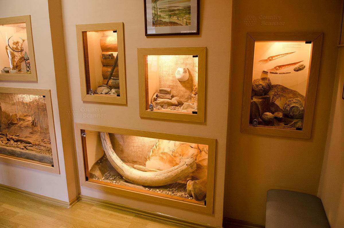 Экспозиция археологических находок на близлежащих территориях в путевом дворце в Солнечногорске.