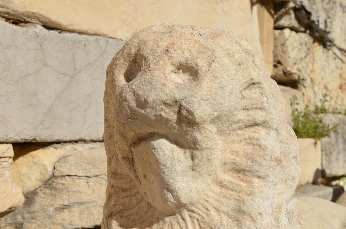 Небольшая львиная голова, обнаруженная на территории афинского Акрополя – либо деталь композиции, либо шутка древнего строителя.