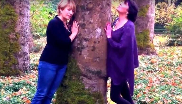 Новость 26-08-2017 В Финляндии проведут Неделю объятий с деревьями