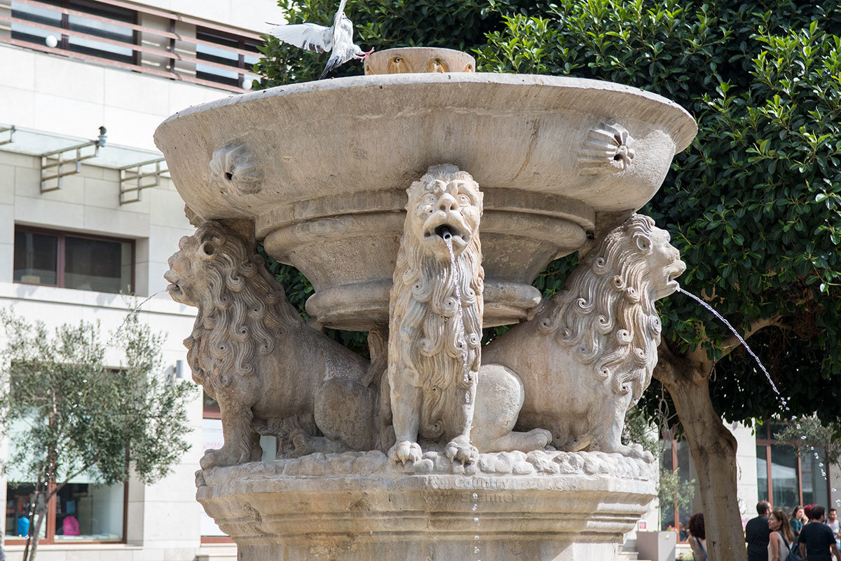 Фонтан Морозини венчает скульптурная группа из четырех львов, поддерживающих своими спинами круглую чашу.