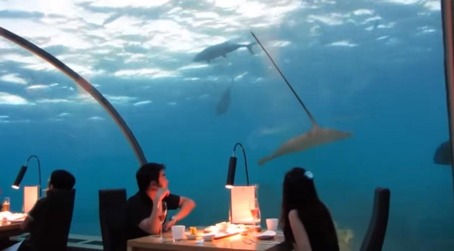 Подводный ресторан откроется в Норвегии в 2019 году