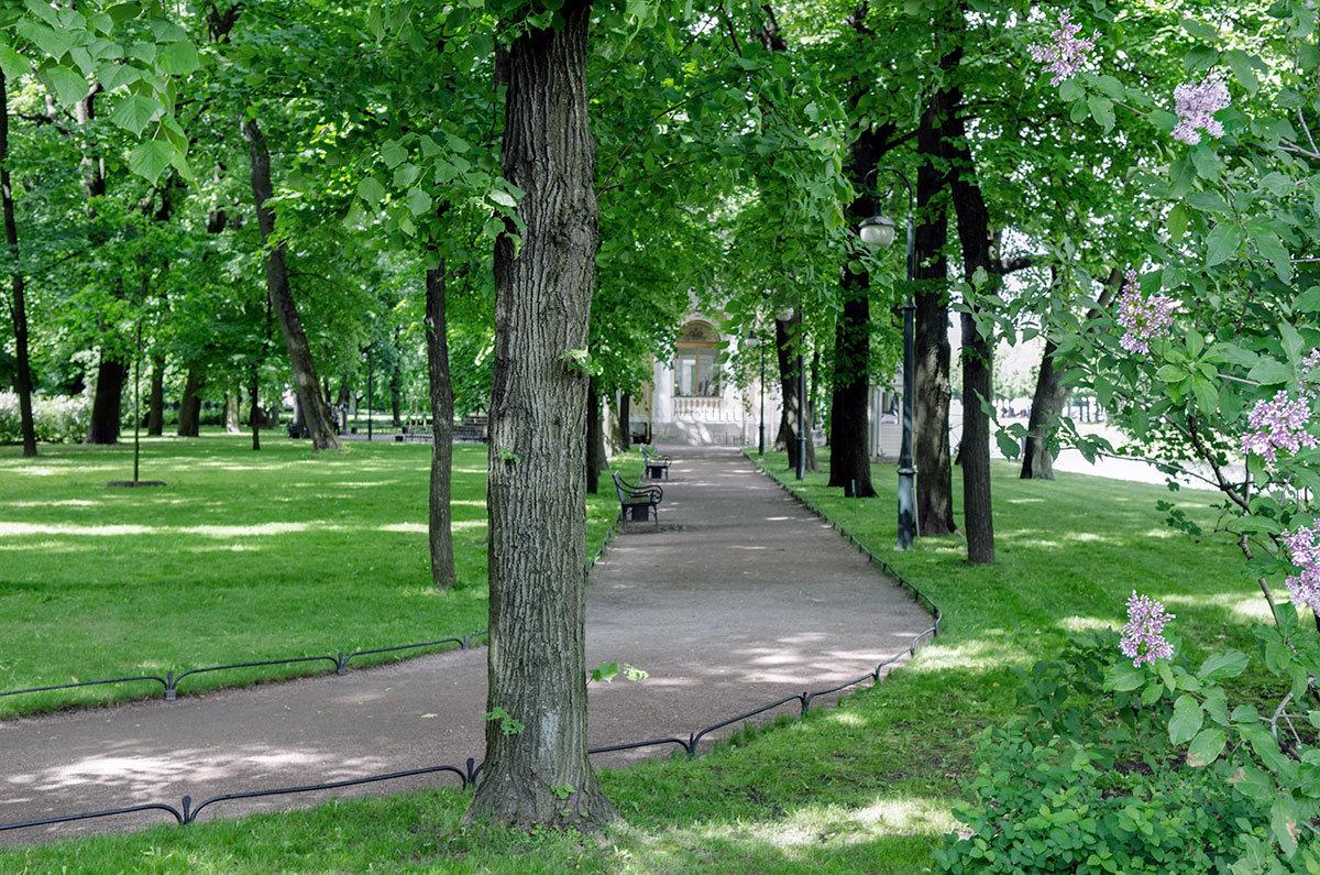 После длительной реконструкции Михайловский сад стал более ухоженным, удобным для посещения.