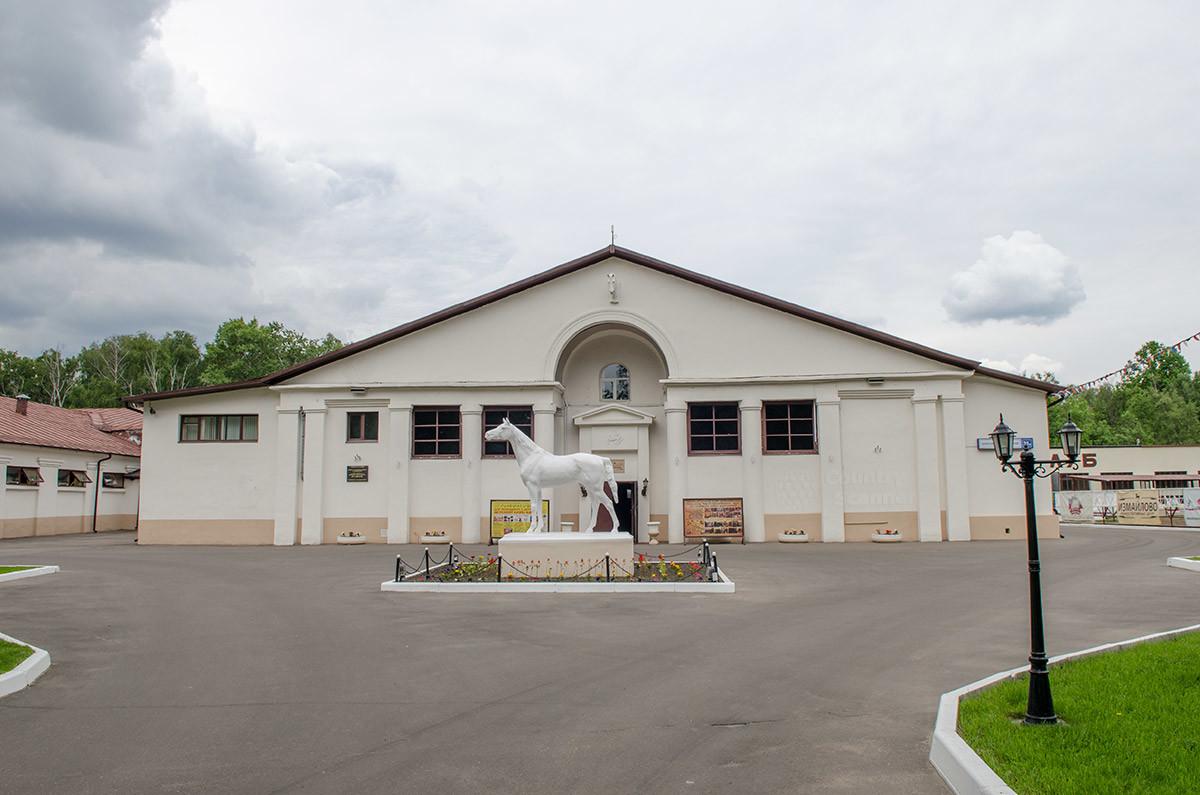 konno-sportivnaya-shkola-v-izmaylovo-countryscanner-1.jpg