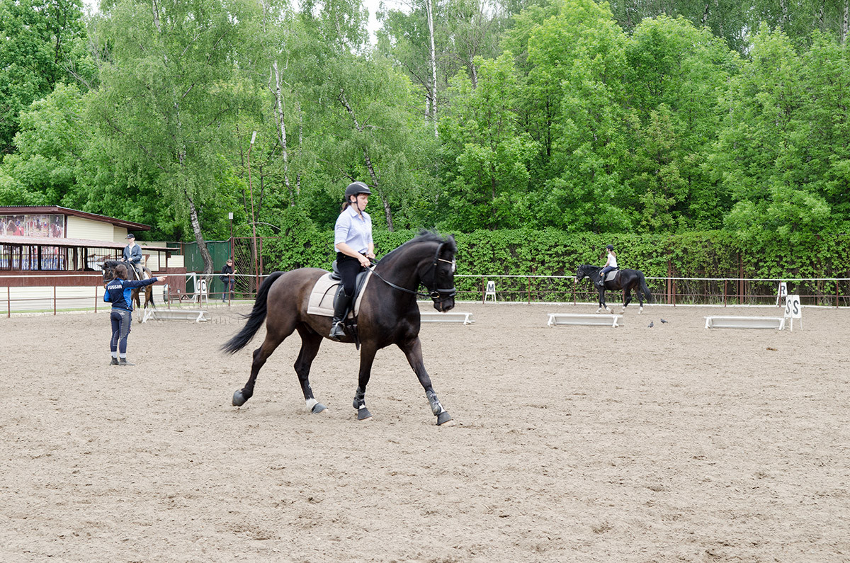 Наездник на лошади в конно-спортивной школе Измайлово