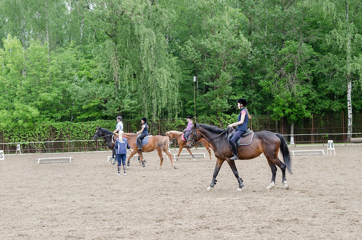 Тренировка в конно-спортивной школе Измайлово