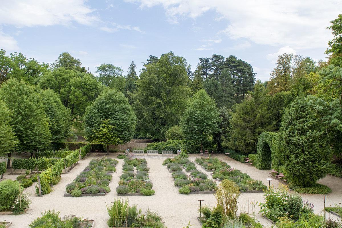Кроме садово-парковой зоны, около замка Валтице разбиты аккуратные грядки с ягодными и огородными растениями.