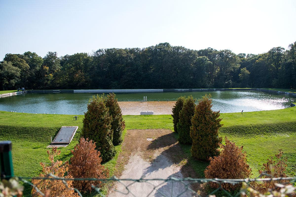Декоративный бассейн к югу от Глориетты окружен травяным газоном с одной стороны и парковыми деревьями с другой.