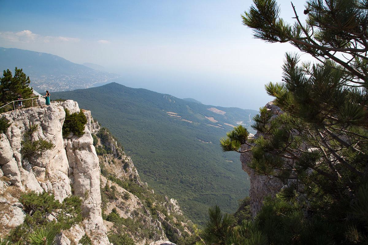 Гора Ай-Петри украшена островками растительности, уцепившейся за расщелины с нанесенным ветрами грунтом.