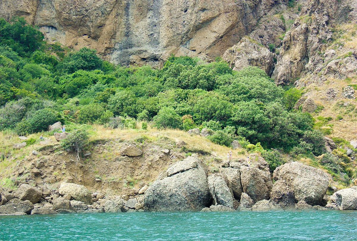 Редкие растительные оазисы в скалистой части горного массива Кара-Даг расположены на холмах из разложившегося песчаника.