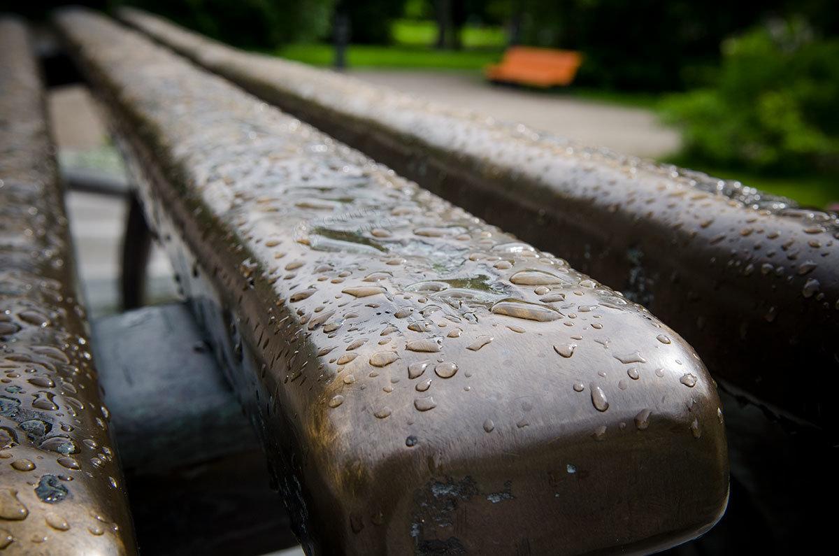 Выполненные из бронзы доски парковой скамьи памятника Рахманинову в Великом Новгороде блестят и сами по себе, и дождевыми каплями.