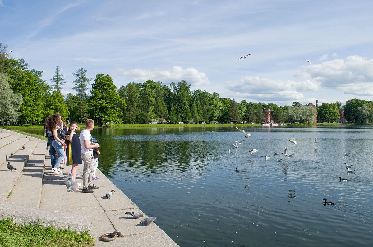 Грот в Царском селе, его набережная и акватория Большого пруда – популярнейшее место проведения свободного времени.