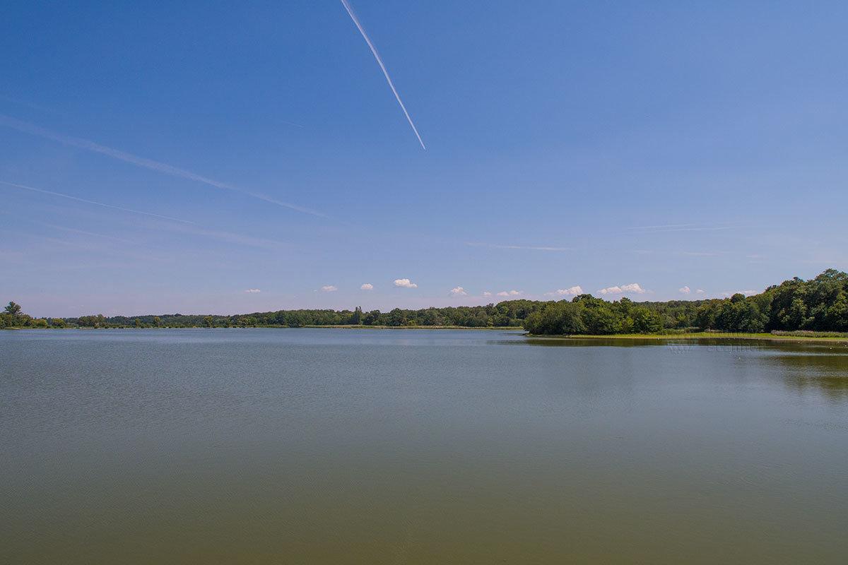 Ледницкие рыбники – три смежных водоема, используемые ранее для разведения рыбы. На берегу среднего расположен прудовый замок.